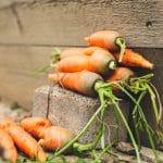 Gérer son alimentation : Guide du sportif écoresponsable